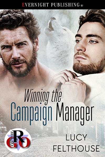 Winning the Campaign Manager