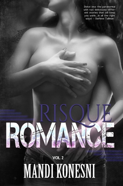 Risque Romance Vol 2