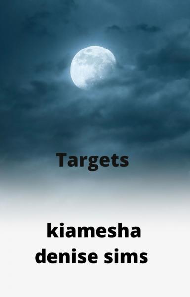 Targets: Book 1 of The Blinded BullsEye Series
