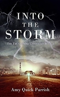 Into the Storm - The Thunderbird Chronicles Book 2